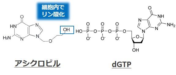 アシクロビル構造式