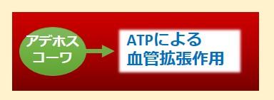 アデホスコーワ、ATP作用機序