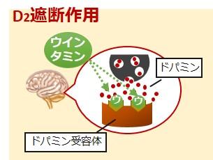ウインタミンコントミン作用機序