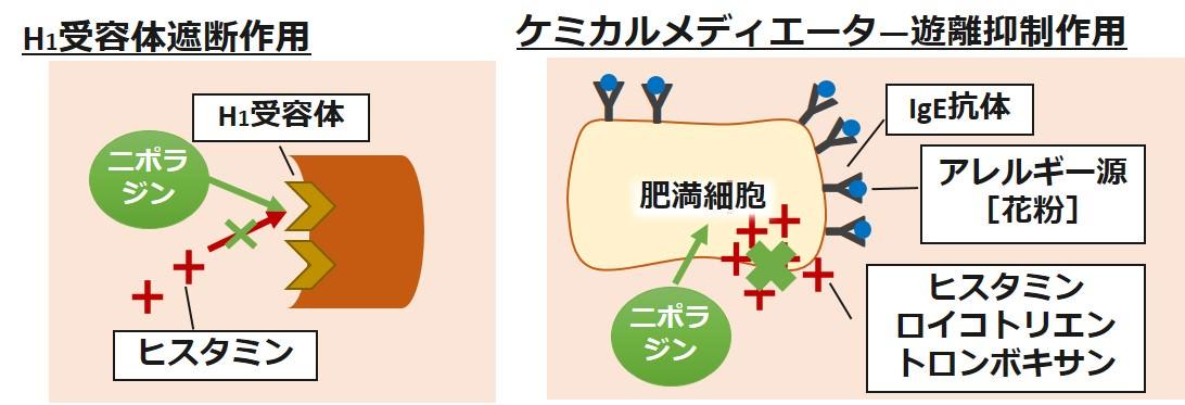 ニポラジン作用機序