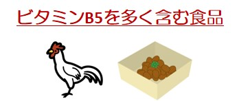 ビタミンB5食品