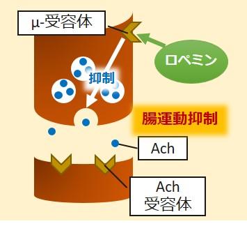 ロペミン作用機序