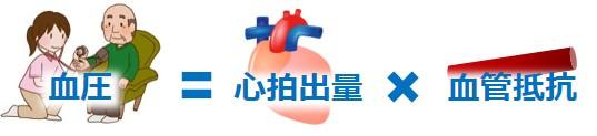 血圧仕組み