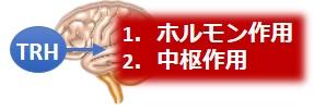 TRH2つの作用