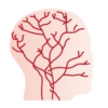 血管障害薬イラスト