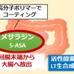 アサコールメサラジン作用機序