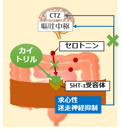 カイトリル[グラニセトロン]作用機序