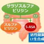 サラゾピリン作用機序